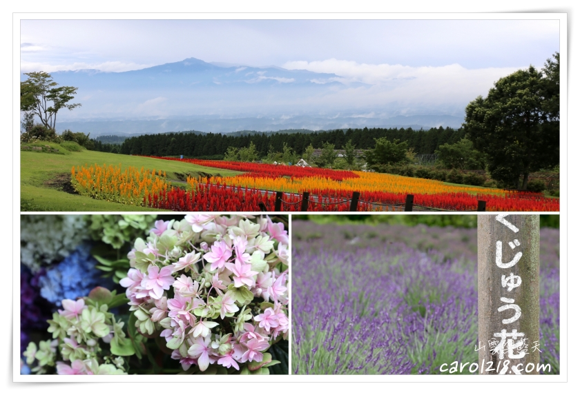 久住花公園,九州,九州親子景點,九州親子自由行,九重花公園,北九州自駕,北九州親子自由行,大分景點 @山。雲與藍天