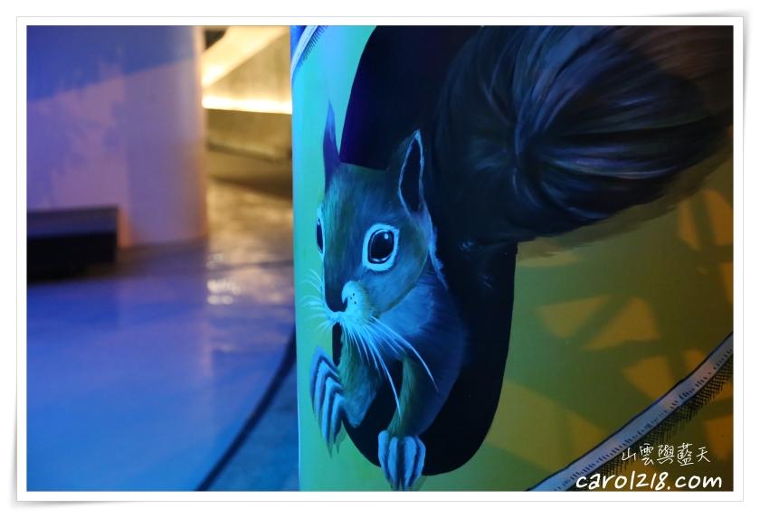 3D夜光彩繪,Time Forest時光森林,中興大學,台中市南區,興大景點,貓頭鷹壁畫,頂橋仔新公地,領角鴞壁畫