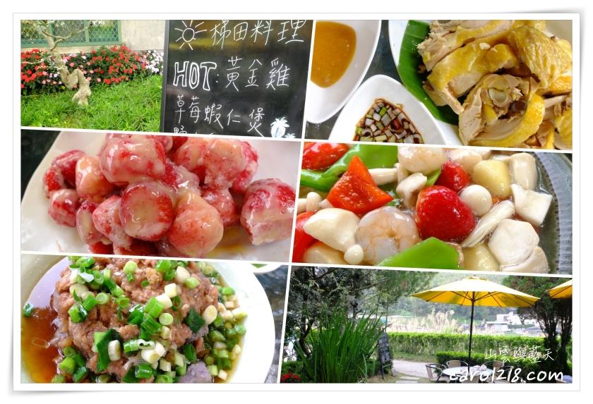[大湖]梯田料理~半山腰民宅好吃平價無菜單料理,採完草莓好去處