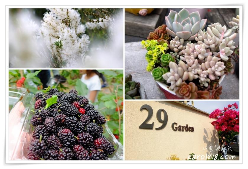 [南投]29號花園~氣氛悠閒可愛的香草花園農場,飲品天然好喝、採桑葚好吃好玩