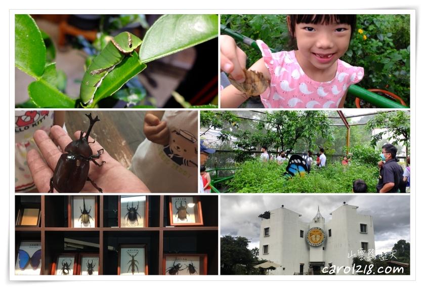 [埔里]木生昆蟲博物館/蝴蝶小鎮生態休閒園區~兼具知性與休閒的昆蟲生態園區