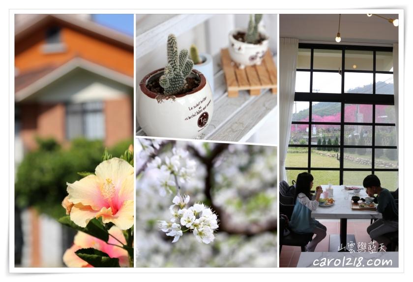 [新社景觀餐廳]山水啡~櫻花李花競相比美、氣質優雅又有大片草地可以活動的景觀餐廳