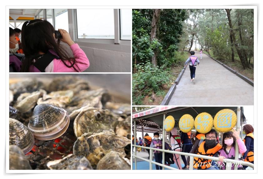 [台南]搭龍海號遊七股潟湖、登無人島,烤蚵吃到飽!豐富有趣好吃好玩的行程,錯過可惜