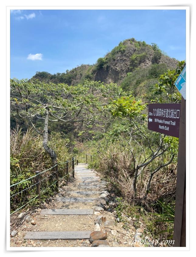 [親子健行]九九峰森林步道輕鬆行,生態豐富風景絕美的稜線步道