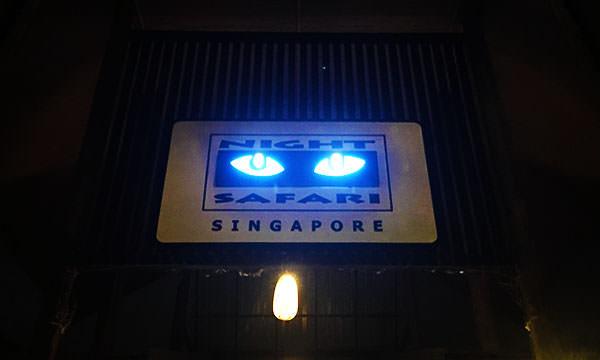 Read more about the article 【新加坡景點】夜間動物園|交通、購票、參觀攻略