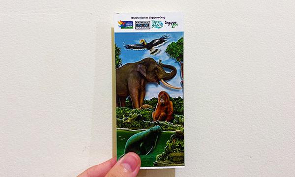 夜間動物園門票