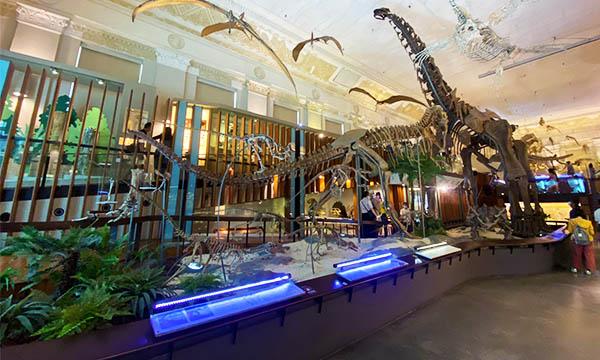 古生物展 恐龍