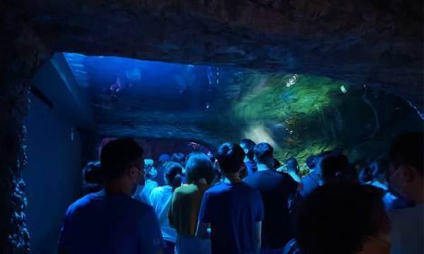 Xpark深海隧道