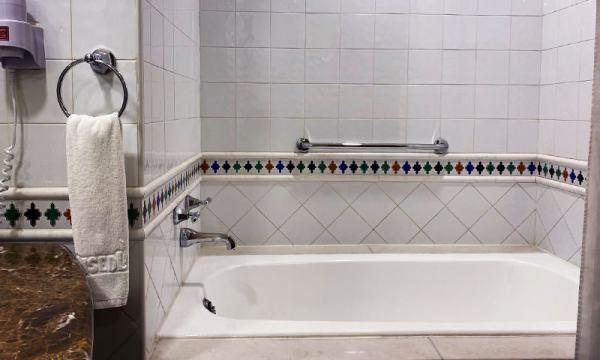 理想大地 浴缸