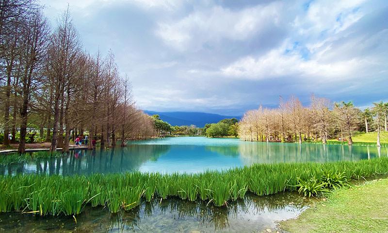 Read more about the article 【花蓮景點】雲山水夢幻湖|絕美!歐洲風落羽松秘境