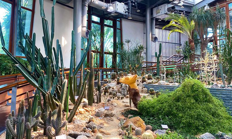 【台北景點】典藏植物園 一次看熱帶、溫帶、高山植物