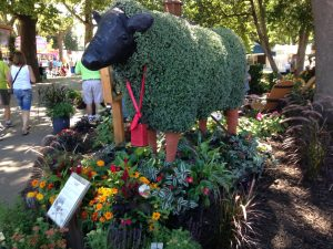 Iowa State Fair - Chia Cow