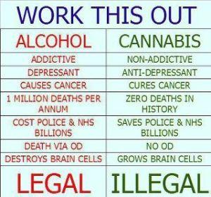 marijuana-misconceptions