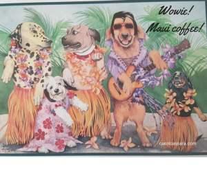 Wowie! Maui coffee!