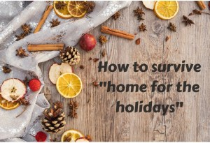 Home for the holidays survival guide