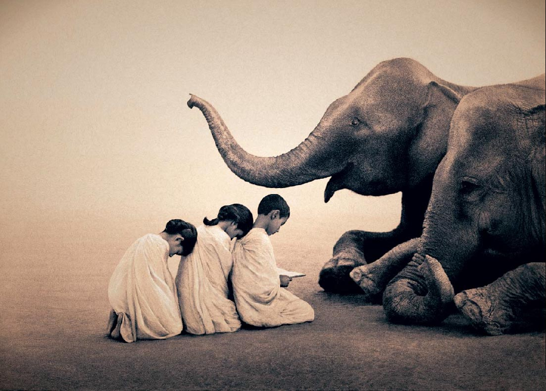 elephants and 3 children