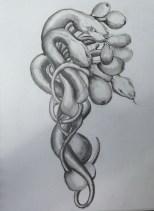 serpents 9.aug.13