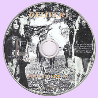 Disc+copy+Purple
