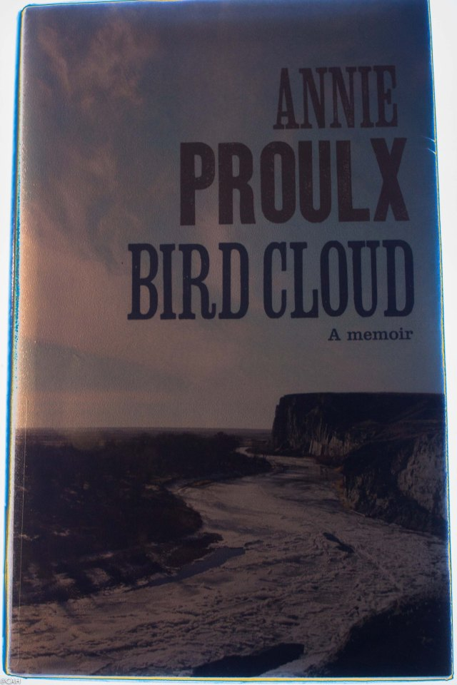 Annie Proulx 1 (1 of 1)