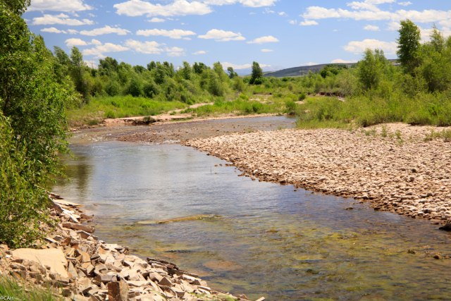 Grass Bear River 2 Wyoming 10 Jul 2016-1
