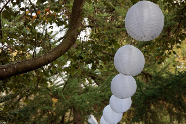 lanterns-botanics-22-oct-2016-1
