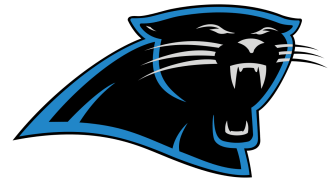 Image result for panthers logo