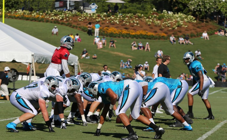 Image result for carolina panthers camp