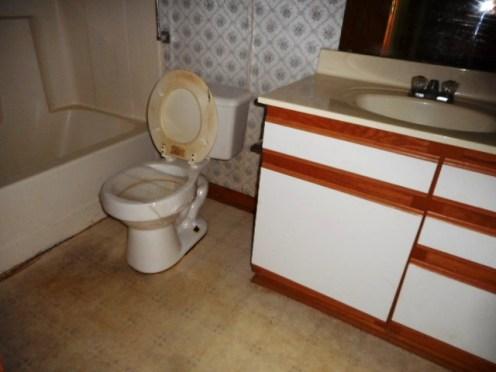 293 Andrews Bathroom