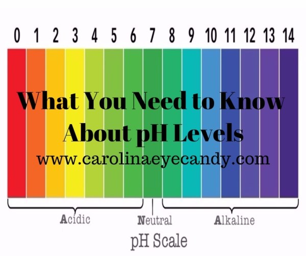 what you need to know about pH levels