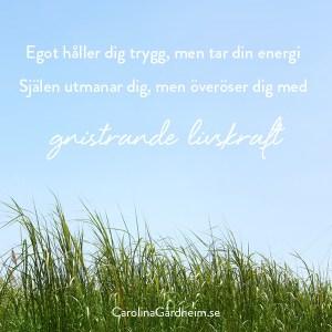 Egot håller dig trygg, men tar din energi Själen utmanar dig, men överöser dig med gnistrande livskraft