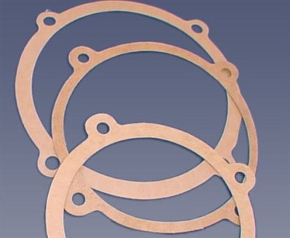 PROLINE -PUMP GASKET- HP500