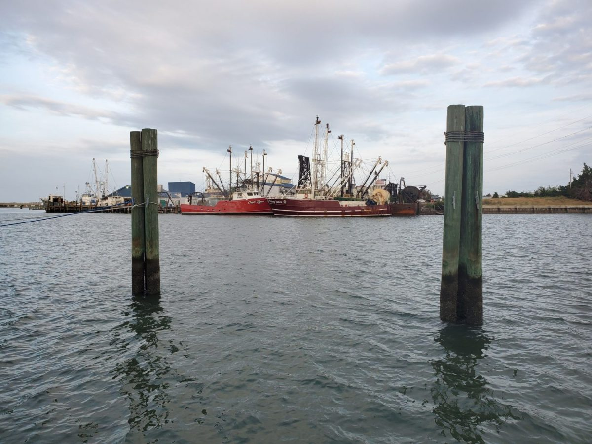 Two shrimp trawlers are docked at Beaufort Inlet. Some are concerned that the loss of fish to the bycatch from trawlers has damaged populations of some species along North Carolina's coast. Jack Igelman / Carolina Public Press
