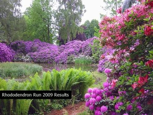 Bakersville North Carolina is Home of the Rhododendron Festival and 10k