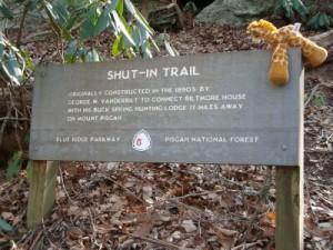 Shut In Trail Race