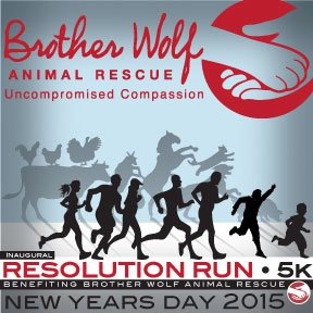 Brother Wolf Resolution Run 5k