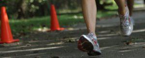 great-waldensian-footrace