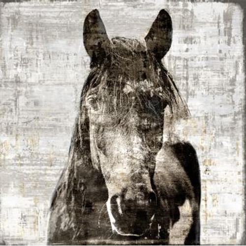 Z Gallerie horse canvas