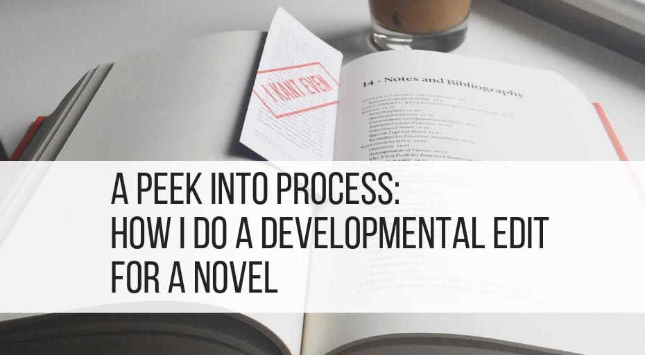 developmental edit for a novel