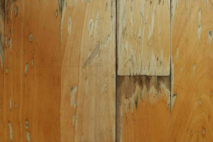 hardwood floor water damage restoration in Lillington NC water damaged hardwood floors