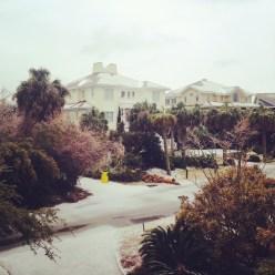 South Carolina, you are deceptively cold