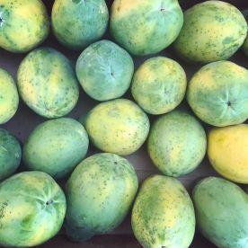 Farmer's market papaya