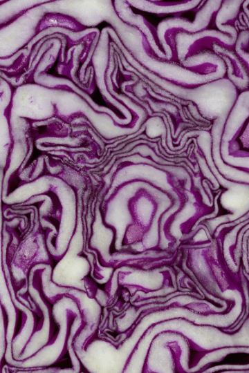 Roasted Red Cabbage with Pistachios and Olives