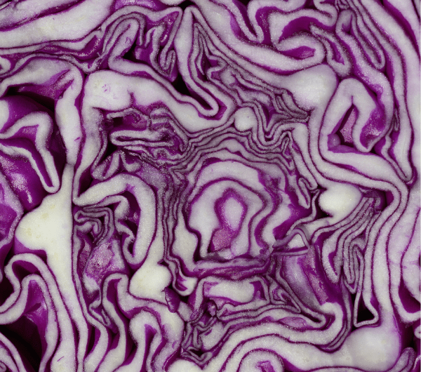 Roasted Red Cabbage with Pistachios + Olives