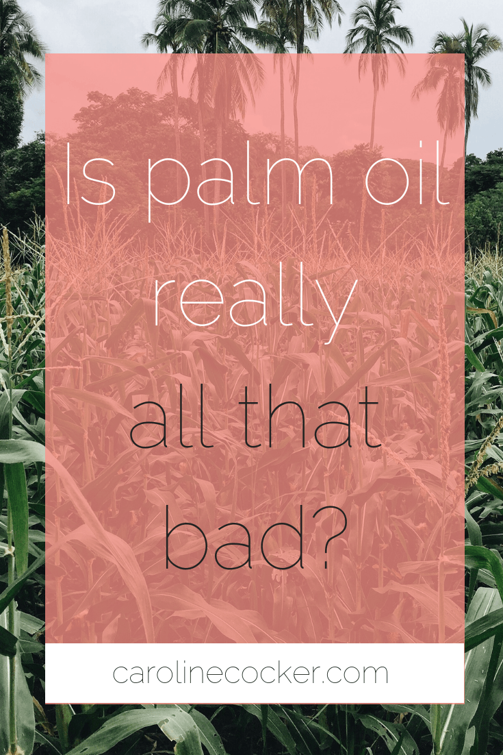 Is palm oil really that bad?