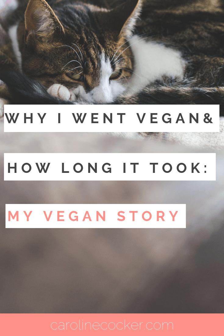 vegan story