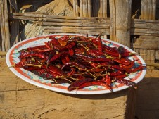Beautiful plate of dried chillies—C.Helbig