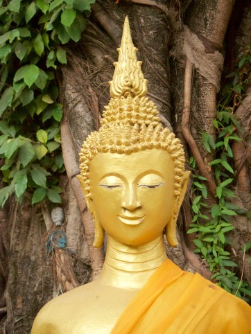 Buddha statues on the grounds of Wat Hai Sok—C.Helbig