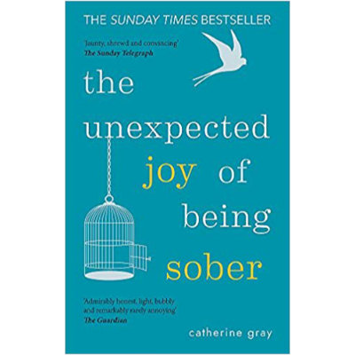 unexpected joy of being sober book
