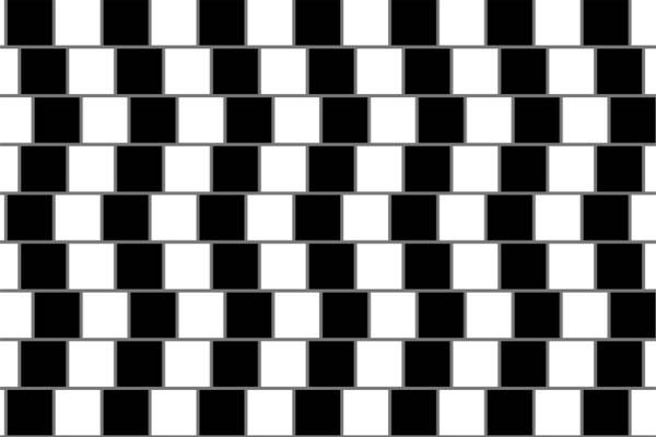 Diese Linien scheinen nicht parallel, sondern schräg zueinander zu stehen. Die optische Täuschung kommt durch die versetzt angeordneten schwarzen Quadrate zustande. Diese stören die Gleichmäßigkeit des Gesamtbildes. Die Linien sind alle parallel, leg doch mal ein Lineal auf das Bild und teste es!