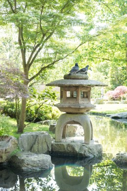 A Japanese water feature with pigeon sat on top